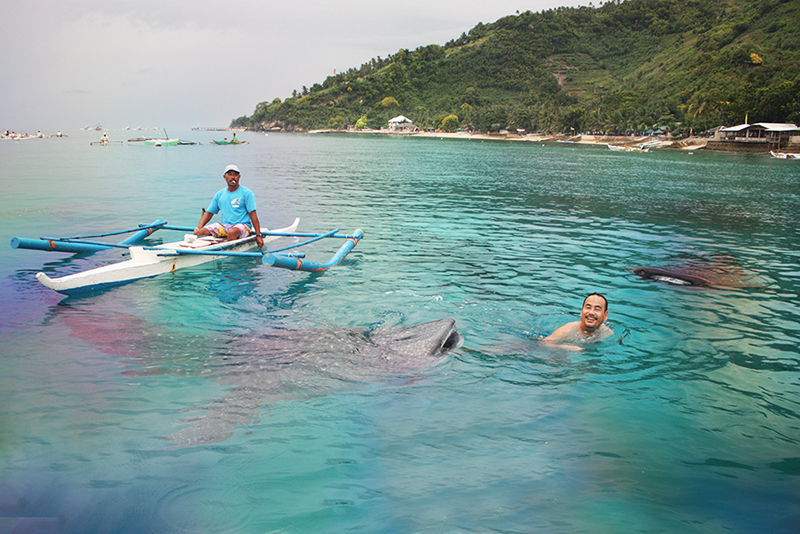 Jim with the whale sharks of Tan-awan, Oslob