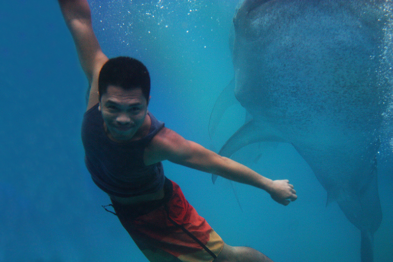 with the whale sharks of Tan-awan, Oslob