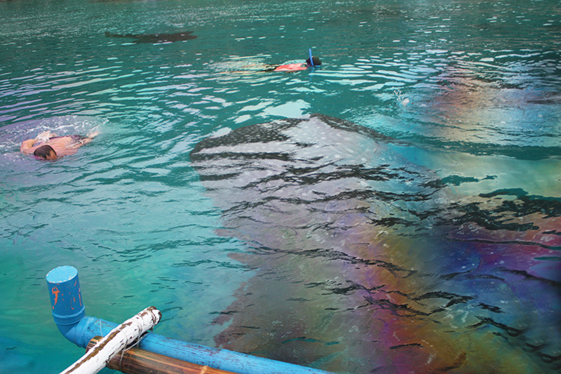 The whale sharks of Tan-awan, Oslob