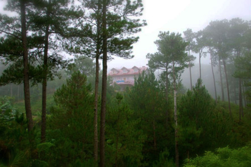 SAGADA ACCOMMODATION: Cheap Lodges, Rooms, Lodges, Inns, Pension Houses, Hotels