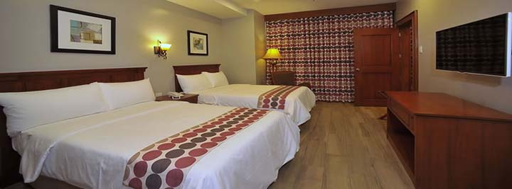 paragon-hotel-and-suites